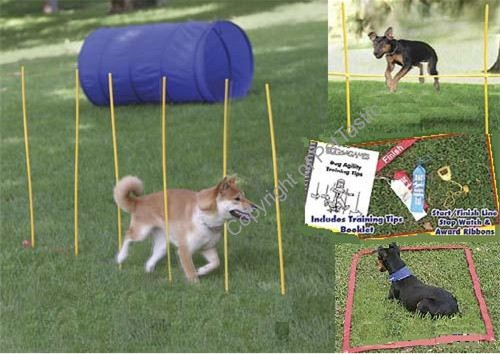 Dog Agility Equipment For Sale Cheap